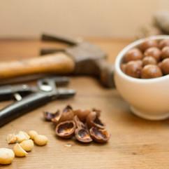 Crack-Macadamia-Nuts-Intro.jpg