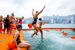 New World Harbour Race