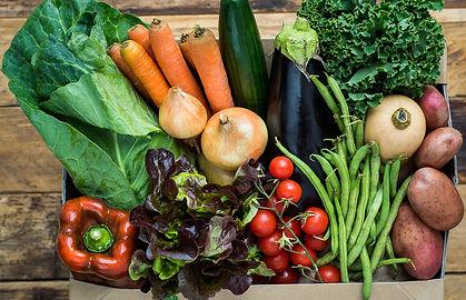 large-veg-box-green-earth-organics-700x6