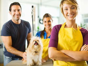 Dog Groomer | Full Service | Spa | Groom | Hair Cut