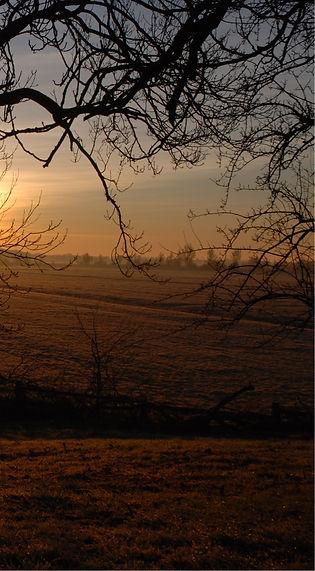 Sonnenaufgang2(2)_cut.jpg