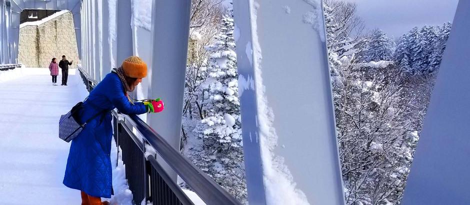 富良野・美瑛を巡る冬の贅沢バス。