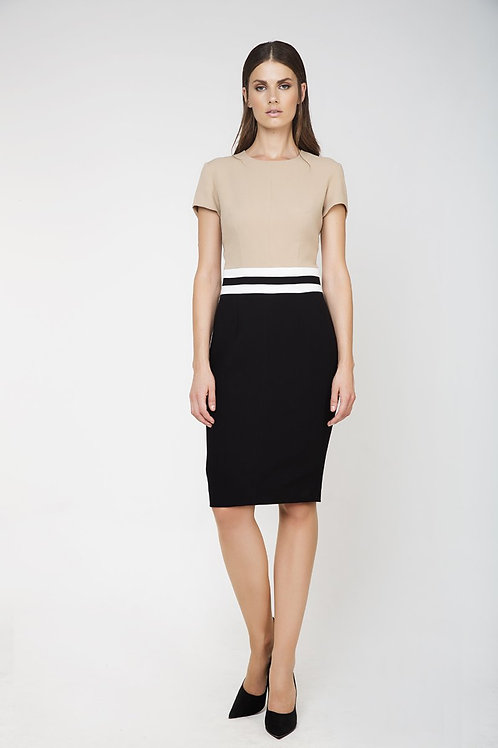 Fitted Short Sleeve Dress