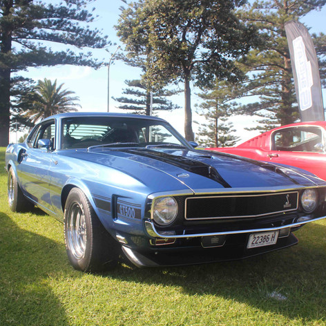 Mustang 12.jpg