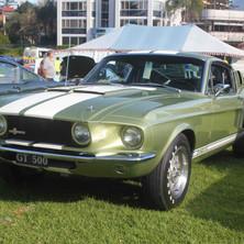 Mustang 11.jpg