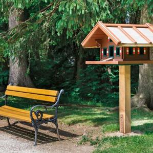 Vogelhaus und Sitzbank