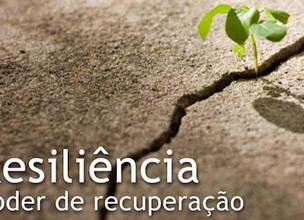 Resiliência é o Princípio da Inteligência Emocional.