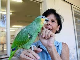 Rodeie-se de vida, papagaio, mulher feliz