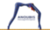 Logo Anoubis transparant RGB2.png
