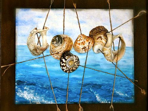 Bundle of Shells