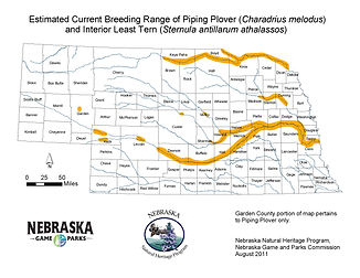 Estimated curren range of Piping Plover (2011)