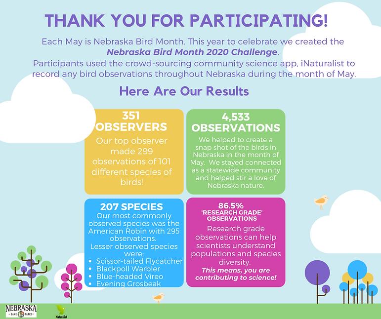 Bird Month Challenge Report for website