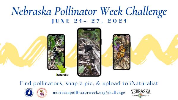 Nebraska Pollinator Week (2).png