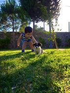 Çocuk Köpek Doğa