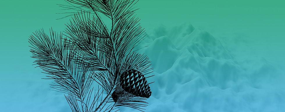 Banner_Christmas_pine.jpg