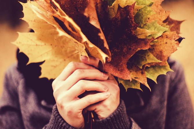 Navigating Fall: Season Of Gratitude and Letting Go