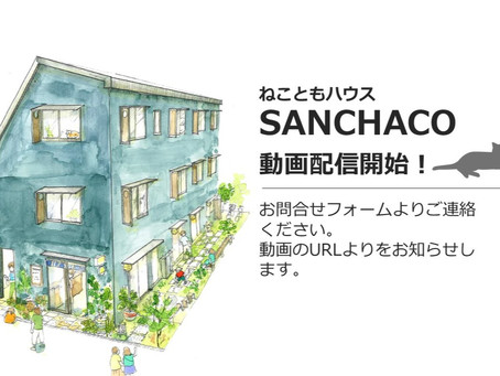 SANCHACO動画配信開始!