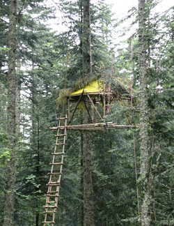 cabane perché bambou