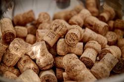 vigne champagne chéré