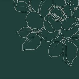 Retrouvez les informations de coloris, d'installations, d'entretiens des compositions florales en papier