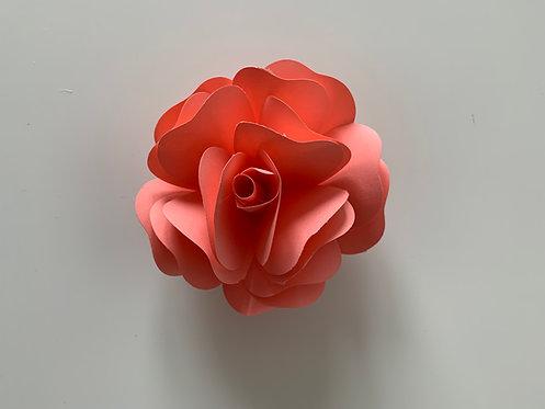 Kelly - Rose Églantine