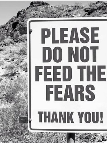 Live a life free of fear.jpg