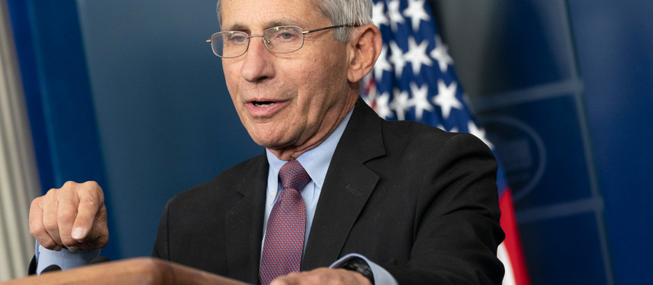 Sen. Rand Paul plan to send a criminal referral of Dr. Anthony Fauci to the Department of Justice