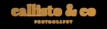 Callisto_logo_velvet-01.png