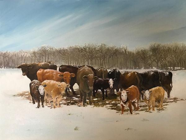 """Early Snow"" OIL (18 x 24)"