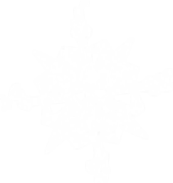 Pirates_Compass_Logo_all_White.png