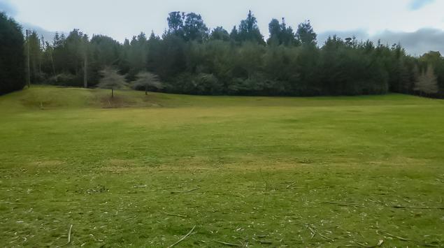 Tui Ridge Park Sports Field