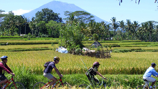 Cycle off the beaten track