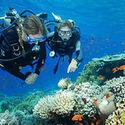 Scuba diving, Villa Cocoa Maya