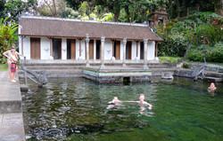 Swim in crystal clear rock pools