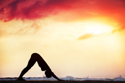 Flex your yoga muscles