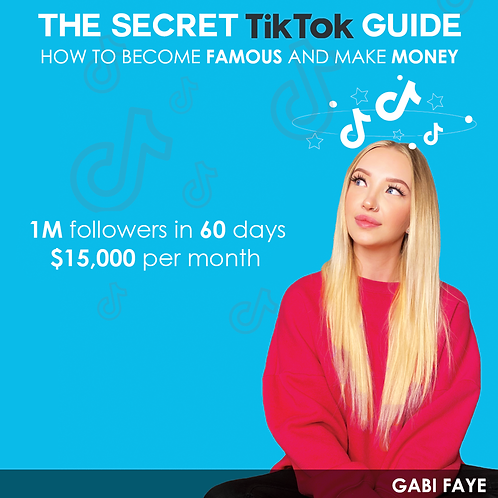 The Secret TikTok Guide: How to become famous and make money