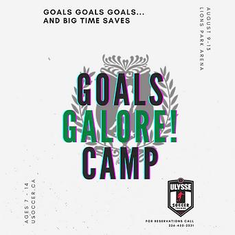 Copy of Goals Galore 2021.png
