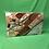 Thumbnail: КПБ Зима/Лето со стеганным одеялом