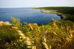 porto selvaggio-Marina di Nardò