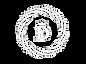 diva_logo_transparent.png