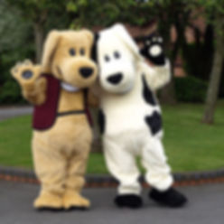 mascot cleaning services