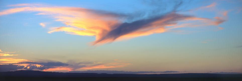 """""""Bird Cloud"""""""