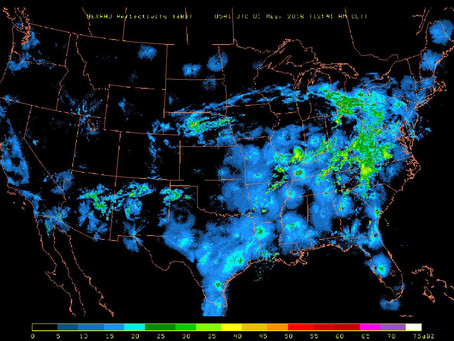 Clouds of birds on the radar