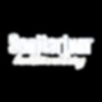 Sanitarium_Logo_WHITE.png