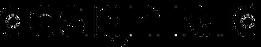 designraid logo.png