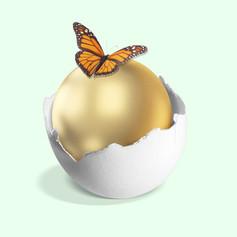innovative egg.jpg