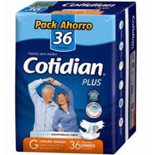 Cotidian Plus G, 36 Un