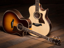 7 Artists Who Play Taylor Guitars