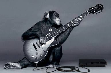 fretmonkey playing guitar2.jpg