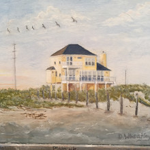 Brown Pelicans over Yellow House